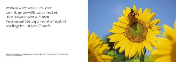 253 Sonnenblume
