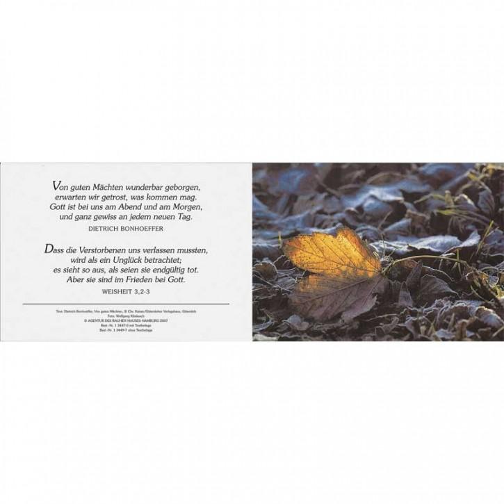 Ewigkeitskarte 2 mit Text (10 St.)