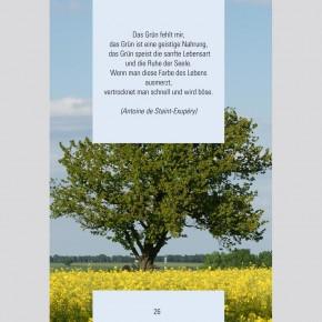 Bildband: Wie ein Baum