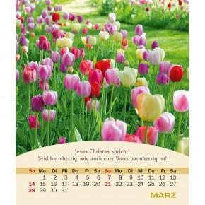 Kalender LEBENSWORTE 2021